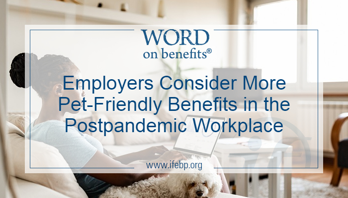 Employers Consider More Pet-Friendly Benefits in the Postpandemic Workplace